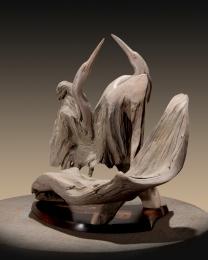 Herons and Waterfowl