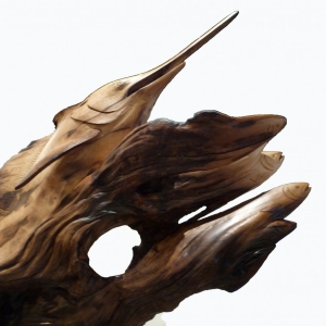 Sailfish Rising Detail