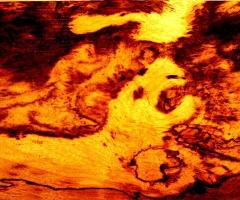 Lava Lion